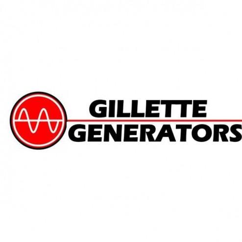 Gillette G-B300 300 CCA STARTING BATTERY 12VDC